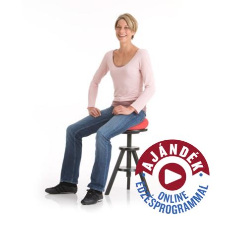 Dynair Senso ülőpárnák 36 cm-es méretben